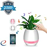 Wonderford Plastic and Metal Touch Music Plant Lamp with Rechargeable Wireless Bluetooth Speaker and LED Night Light (Assorted Colour)