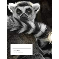 Help!: Ring Tailed Lemur - Climate Crisis