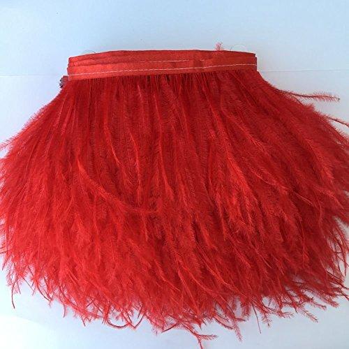 kolight natur 2Meter Stück gefärbt Strauß Federn 4~ 15,2cm (10~ 15cm) Trim Fransen für DIY Kleid nähen Handwerk Kostüme Dekoration rot (Federn Kleid)