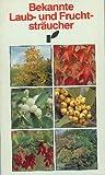 Bekannte Laub- und Fruchtsträucher [Caisse]