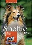 Sheltie: Charakter - Erziehung - Gesundheit (Cadmos Hunderassen)