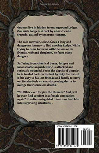 Dilrics-Quest-Book-Two-of-The-Gnome-Saga-Volume-2