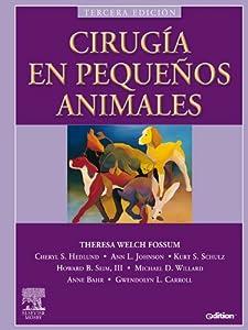 cirugía animales: Cirugía en pequeños animales