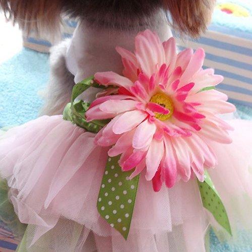 strimusimak Hund Kleid Rock Daisy Blume Gaze Tutu Welpen Katze Bowknot Prinzessin Kleidung Pet Geschenk M