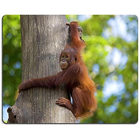 luxlady Mousepads orangután en la selva de Imagen de Borneo Malasia 20879403personalizada Art ordenador de sobremesa Gaming Mouse Pad