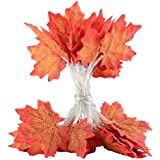 Maple Leaf Style LED Light String, DIY Flower Shape Fairy Light Wire Lamp Battery Powered for Christmas Valentine's Day, Halloween, Birthday Party, Wedding, Crafts Decoration (2m 20LED)