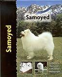 Samoyed (Pet love)