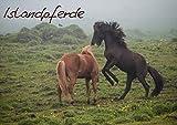 Islandpferde (Posterbuch DIN A3 quer): Ein Posterbuch über Islandpferde in ihrer natürlichen Umgebung (Posterbuch, 14 Seiten) (CALVENDO Tiere) [Papeterie] [Nov 29, 2013] Stephan, Elisabeth