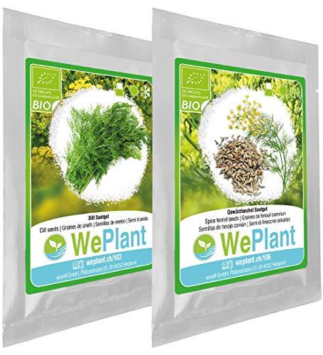 BIO Dill & Gewürzfenchel Pflanzen-Samen Set - indoor/outdoor