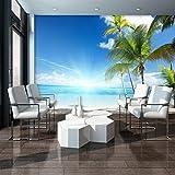 FORWALL Fototapete Vlies Tapete Moderne Wanddeko Sonniger Strand VEXXXL (416cm. x 254cm.) AMF735VEXXXL Strand und Tropen