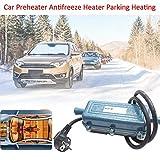 haodene Standheizung Motorvorwärmer Motorvorwärmung Auto Vorwärmer Tankheizung Verhindert Wassertank Einfrieren Spannung 220V Leistung 3000W