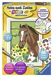 Ravensburger 28463 Libro/álbum para Colorear - Libros y páginas para Colorear (Libro/álbum para Colorear, Niño, Niño/niña, 7 año(s), 6 Pieza(s))