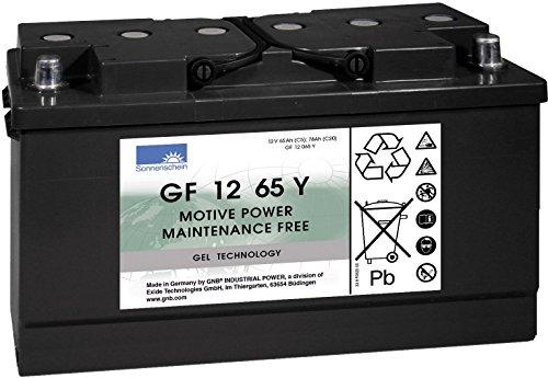Batterie Plomb-gel 12 V 65 Ah GNB Sonnenschein GF 12 065 Y