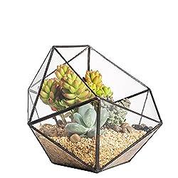 Modern Handmade Triangular Half Ball Glass Geometric Terrarium Balcony Bowl Shape Flower Pot Window Sill Miniature Bonsai Container Coffee Table Top Centerpiece Display Planter for Succulents Plants