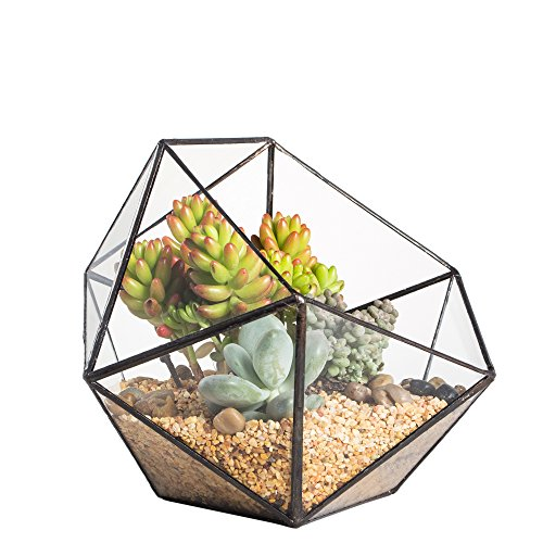 NCYP Gemoetrisches Glasterrarium, modern, handgefertigt, dreieckig, in Form einer Halbkugel, für Balkon, Tischdeko, als Blumentopf für Miniatur-Bonsai, auf der Fensterbank, Übertopf für Sukkulente, Kakteen