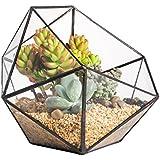 Moderno hecho a mano triangular media bola cuenco forma cristal terrario balcón mesa miniatura Bonsai macetas alféizar Centerpiece pantalla recipiente maceta para suculenta Cactus
