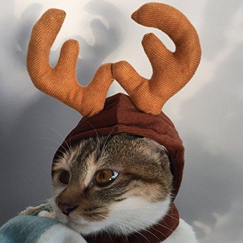 Terzsl Hut für Hunde und Katzen, Weihnachtsmütze, Rentier-Geweih, -