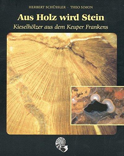 Aus Holz wird Stein: Kieselhölzer aus dem Keuper Frankens Simon Holz