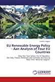 EU Renewable Energy Policy - Aan Analysis of Four EU Countries: Only One Year before the EU Deadline: Are Italy, France, Denmark and Germany on Track to Meet their National Targets?