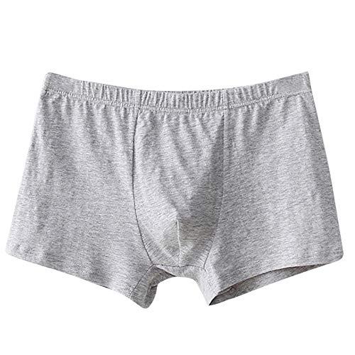 Celucke Unterhosen Männer aus Bio-Baumwolle, Herren Boxershorts Hüftslips Unterwäsche Retroshorts Hipster Fitted Basic Boxer