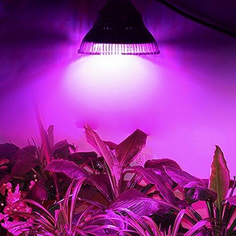 Eclairage horticole LED (sans ballast) de 54w, de forte puissance. Faible consommation éléctrique.Ffaible émission de chaleur !
