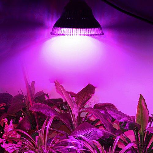 eclairage-horticole-led-sans-ballast-de-54w-de-forte-puissance-faible-consommation-electriqueffaible