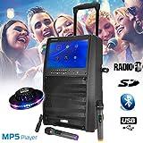 Mobiler Lautsprecher, freistehend, 12 W, 800 W, TFT-Display, 15 Zoll, BT + 2 Mikrofone UHF + Tel, PORT-TFT12 + UFO Ovni
