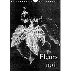 Fleurs noir (Wandkalender 2019 DIN A4 hoch): Fleurs Noir - ist ein künstlerischer Streifzug mit Kreidestift auf koloriertem, leinenstrukturiertem ... (Monatskalender, 14 Seiten ) (CALVENDO Kunst)
