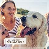 AniForte 30 ml Sanfte Augenpflege mit Augentrost Augentropfen u.a. bei trockenen Augen – Naturprodukt für Haustiere - 5