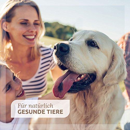 AniForte Calm & Relax Anti-Angst-Kapseln 100 Stück – Naturprodukt für Hunde - 5