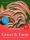 Gräser und Farne: Die schönsten Arten und für sonnige und schattige Beete