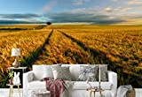 Vlies Fototapete Fotomural - Wandbild - Tapete - Pflanzen Feld Farming-Tracks Landschaft - Thema Wiesen und Landschaft - XL - 368cm x 254cm (BxH) - 4 Teilig - Gedrückt auf 130gsm Vlies - 1X-42931V8