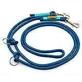Taumur: zweifach verstellbare Hunde-Tauleine - blaugrün/türkis - Leine für große Hunde aus robustem PPM