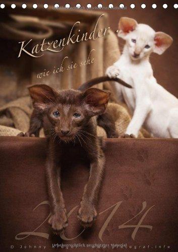 Katzenkinder wie ich sie sehe.. (Tischkalender 2014 DIN A5 hoch): verschiedene Katzenkinder von Rassekatzen die den Betrachter ins Herz schauen (Tischkalender, 14 Seiten) (Angora Herz)