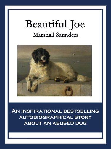 Beautiful Joe por Marshall Saunders
