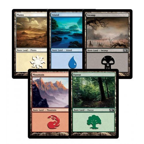300 Assorted Magic: The Gathering MTG Basic Lands Cards [Toy]
