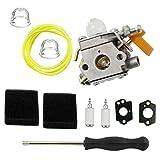 Tucparts Carburateur et outil de carburateur et filtre à air pour Ryobi Rbc30set Rlt30cet Rht2660da Rlt26cds Rbc26ses Homelite Débroussailleuse faciles à Zama C1u-h60308054003985624001