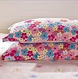 Wmshpeds Baumwolle Kissen ein paar Erwachsene twill Baumwolle Kissenbezug single Kissen set 48 * 74 cm