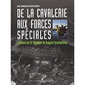 De la cavalerie aux forces spéciales, l'histoire du 13e RDP
