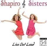 Stephen Schwartz Soundtracks & Musicals