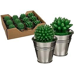 Cactus Candles in Metal Pot Favors