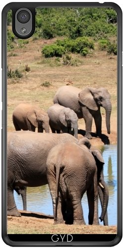 case-for-one-plus-x-elephant-africa-exotic-by-wonderfuldreampicture