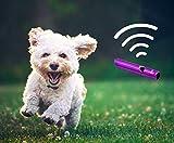 Signalpfeife Pfeife für Outdoor Notfallpfeife Hundepfeife Trillerpfeife Trainingspfeife als Schlüsselanhänger in der Farbe schwarz von der Marke PRECORN - 2