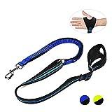 Nylon Band Dog Hundeleine reflektierende Seil mit Hundegeschirr in Unternehmen elastische Traction Control Leine 1CP