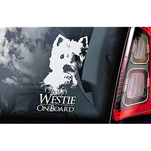 White highland white terrier car window sticker dog sign internal reverse printed v01