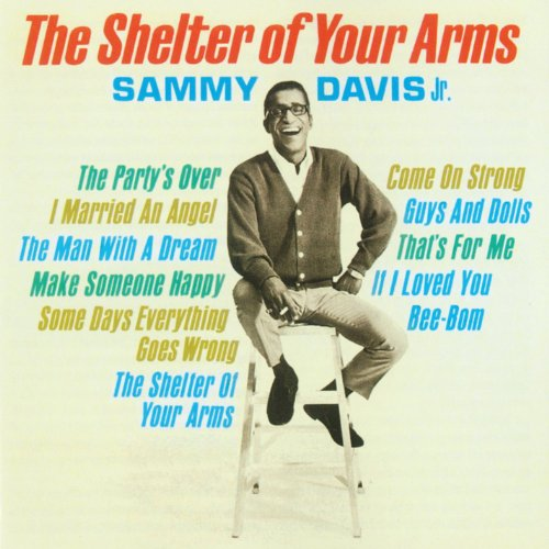 The Shelter Of Your Arms