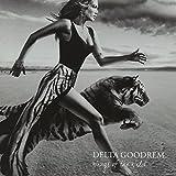 Songtexte von Delta Goodrem - Wings of the Wild