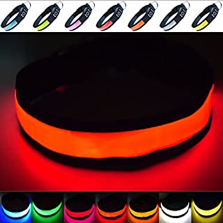 Super Bright USB Rechargeable LED Dog Safety Collar - Great Visibility & Improved Safety - 4 Colours, 3 Sizes (Red, Medium)