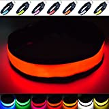 Fun Pets Super Bright LED Collar (X-Klein (20cm - 30cm / 7.87