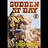 Sudden at Bay (A Sudden Western Book 2)